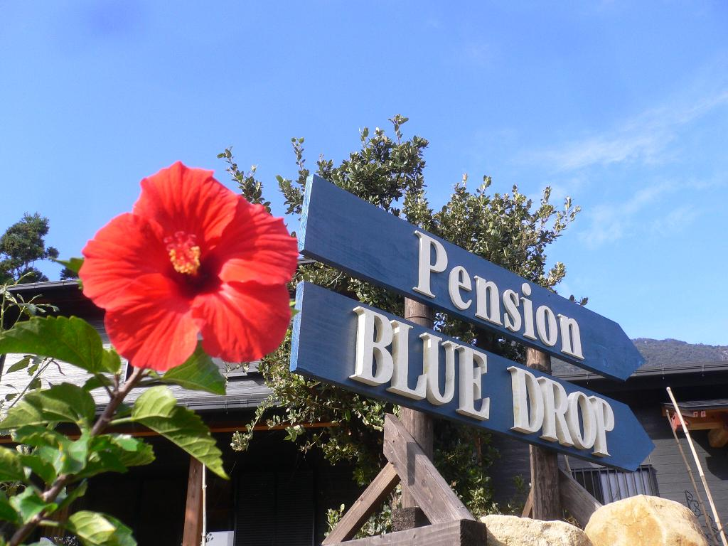Pension Blue Drop