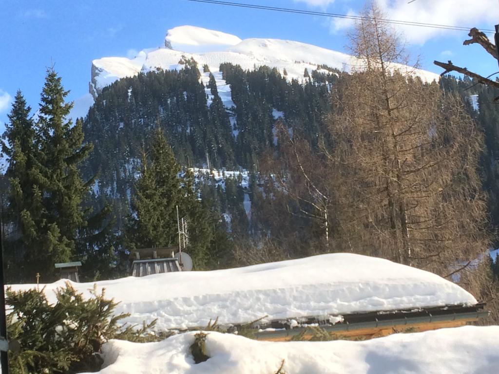 Chalet Hotel de Borderan