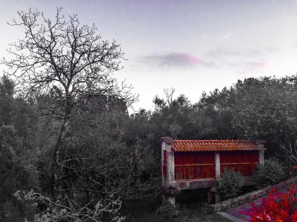 Hotel Rural e Ecologico Maria da Fonte