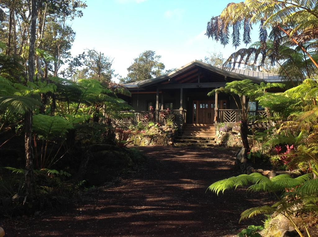 Volcano Rainforest Lodge - Volcano