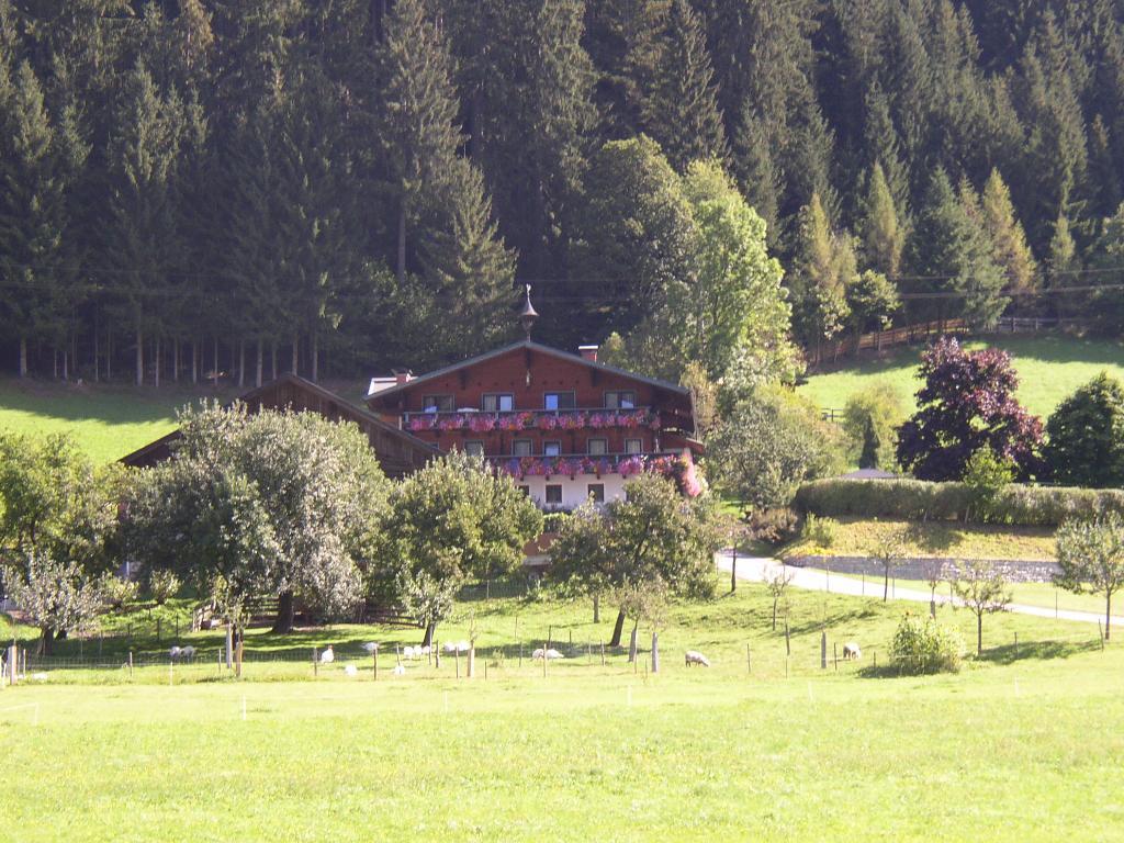 Bauernhof Appartement - Ferienhof Ortnergut
