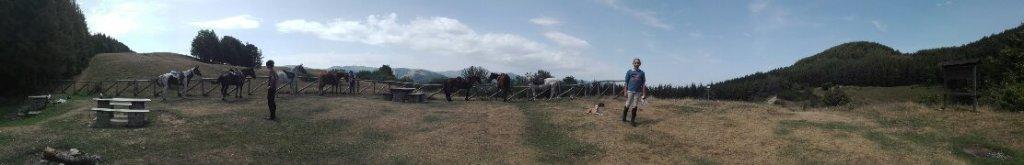 Agriturismo Cavalli di Sparta