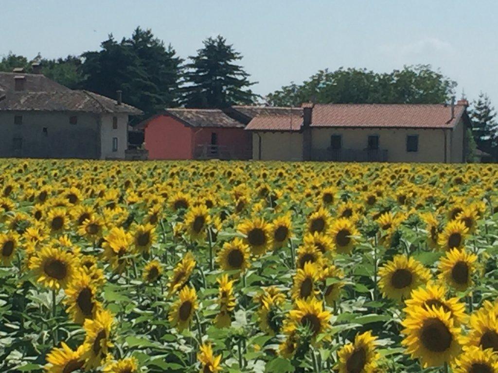 Borgo Chiasalp Alloggio Agrituristico