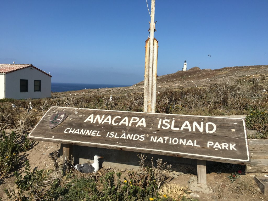 East Anacapa Campground