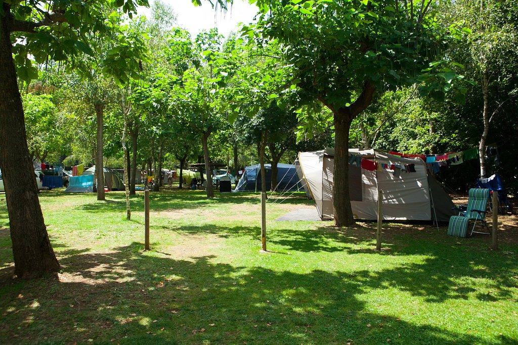 Lava Camping Ecologic