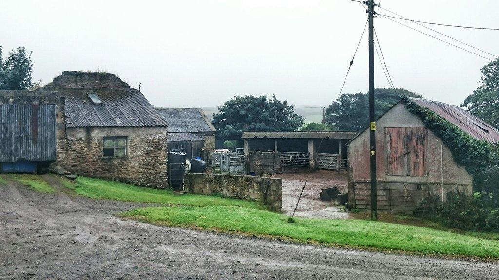 Bake Farm