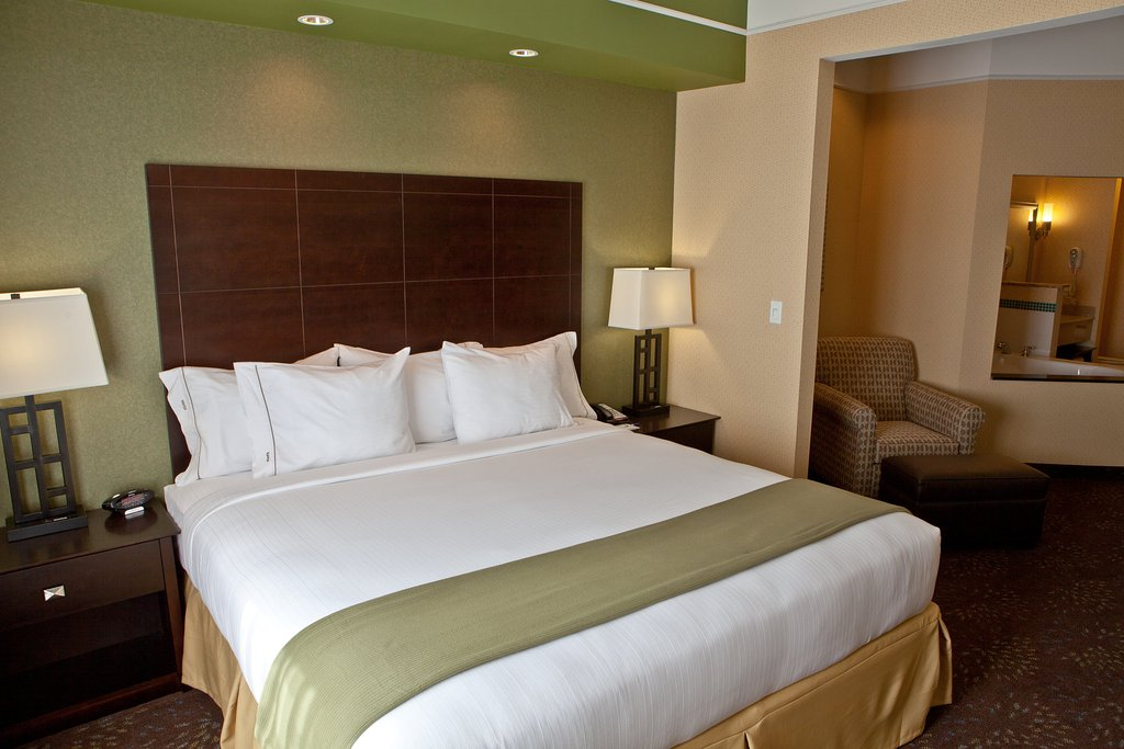 Holiday Inn Express Hotel & Suites Lansing-Dimondale
