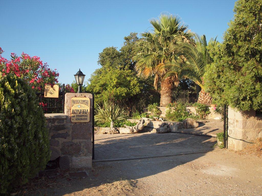 Molivos View Studios