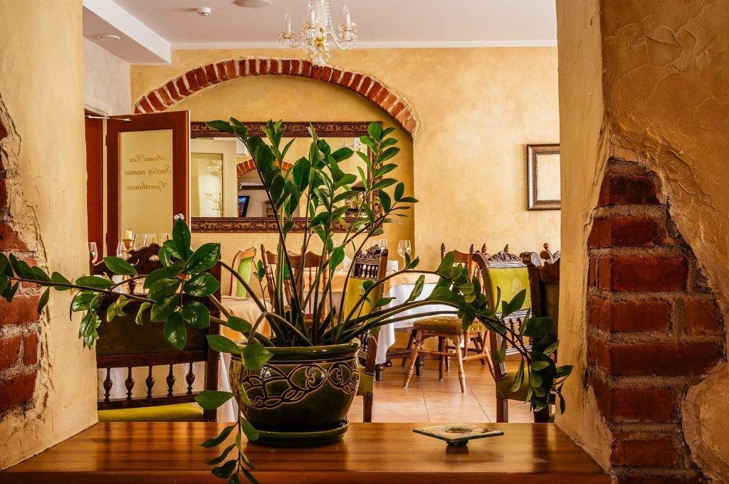 Guest House Novus Rex