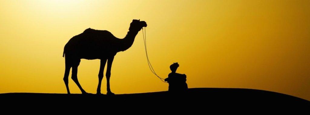 Camel Man Safari Tour