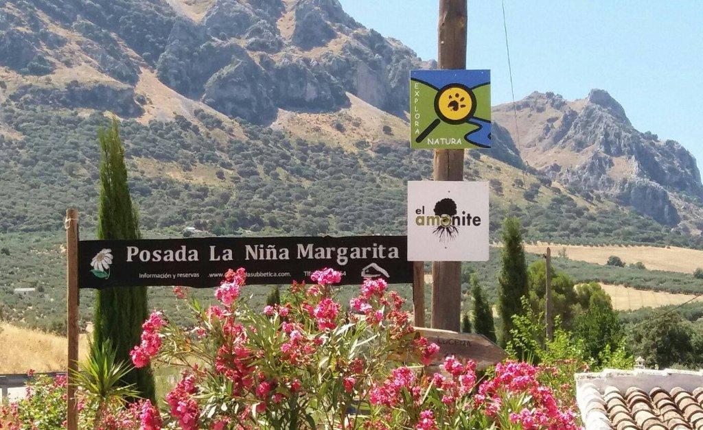 Posada La Nina Margarita