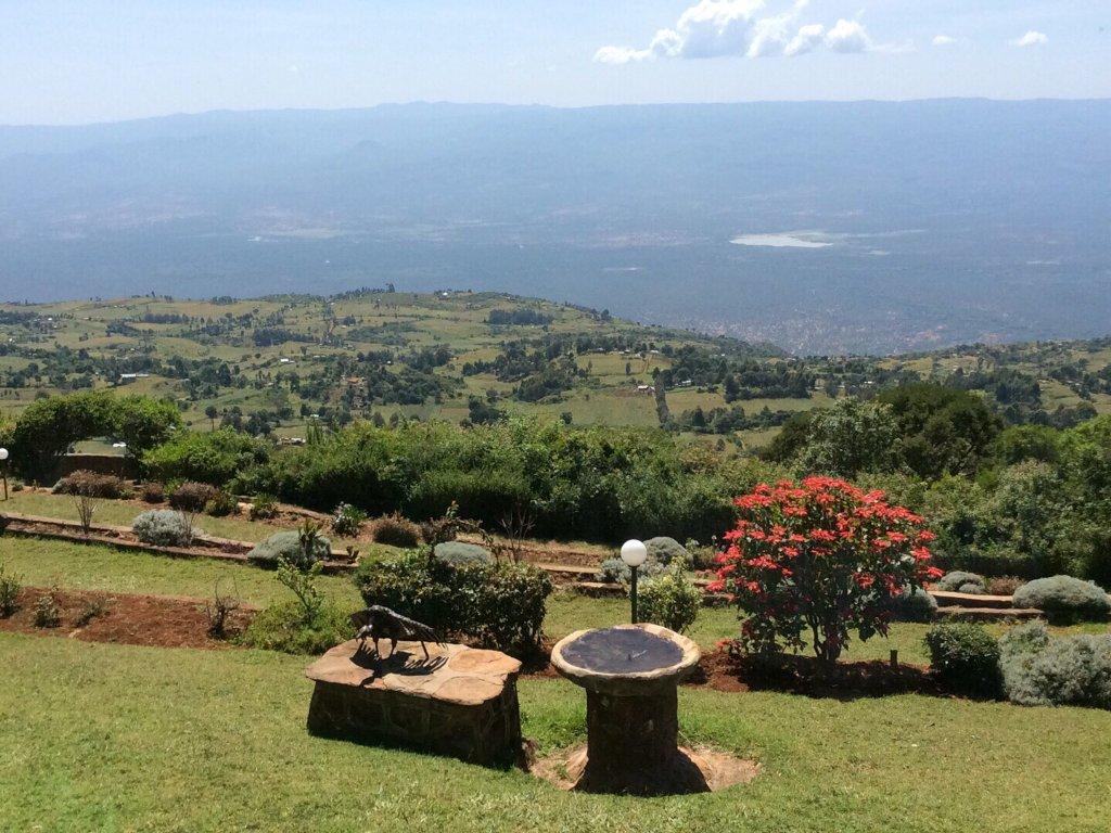 Kerio View