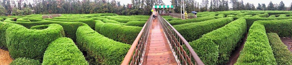 Jeju Kimnyoung Maze Park