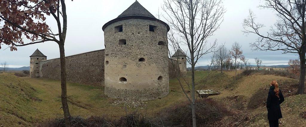 Bzovik