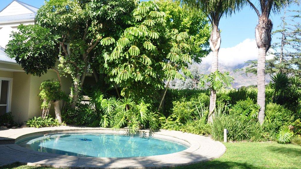 Constantia Palms
