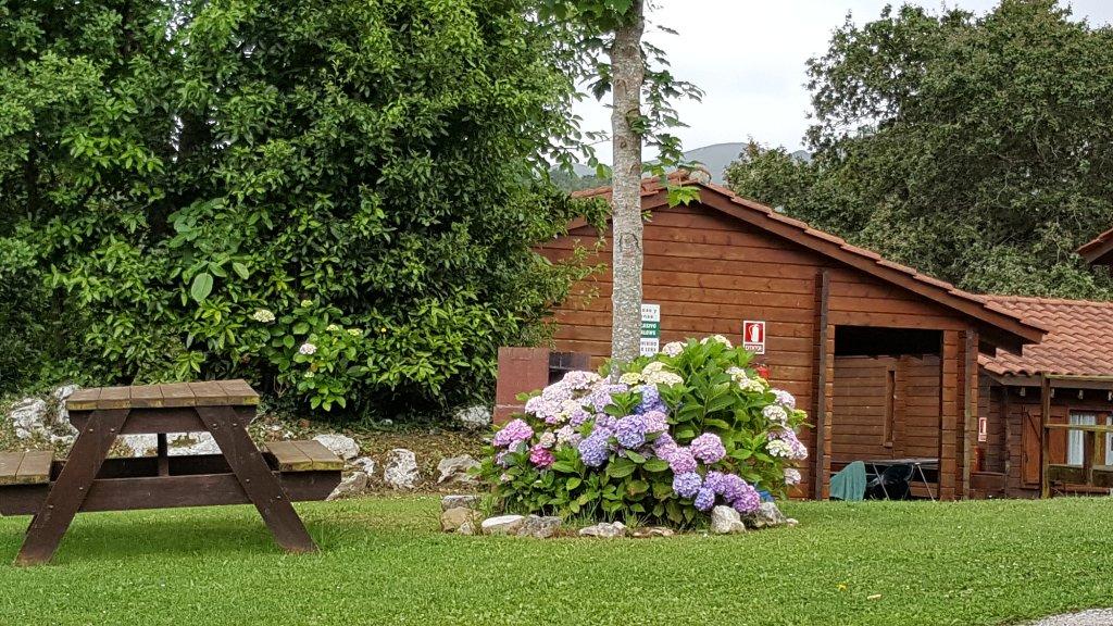 Camping Ribadesella