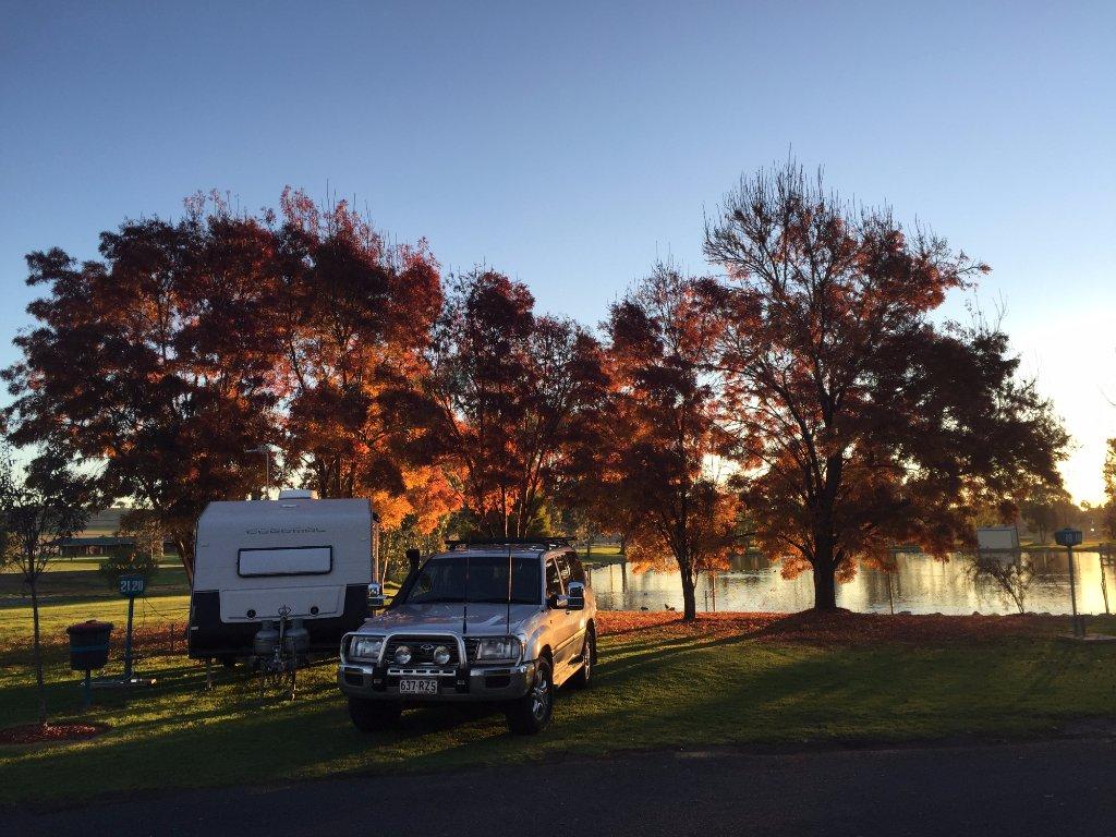 Junee Tourist Park
