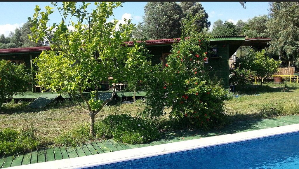Sun Dalyan Hotel and Organic Farm