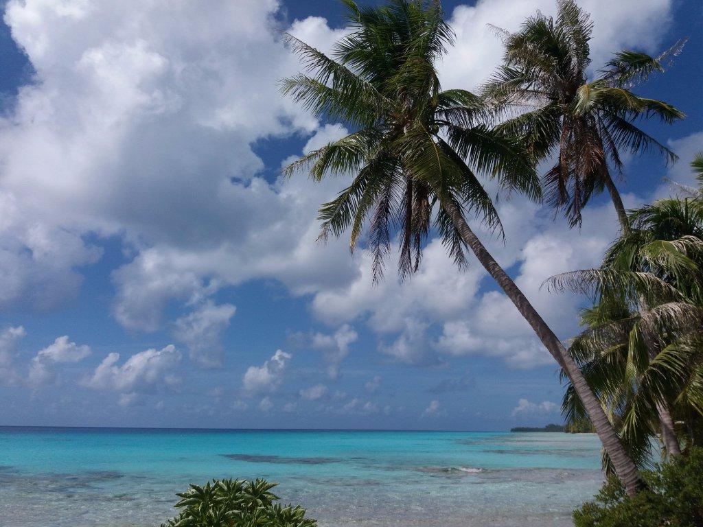 'TripAdvisor' from the web at 'https://media-cdn.tripadvisor.com/media/photo-w/11/5b/2b/8b/spiaggia.jpg'