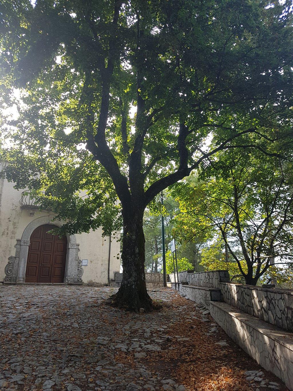 Borgo di Castello