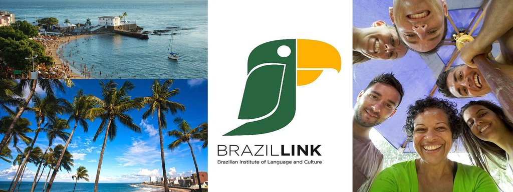 BrazilLink