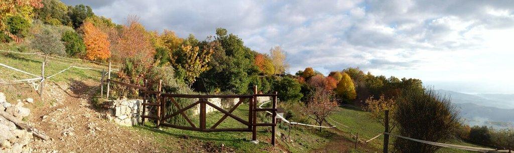 Parco degli Aceri