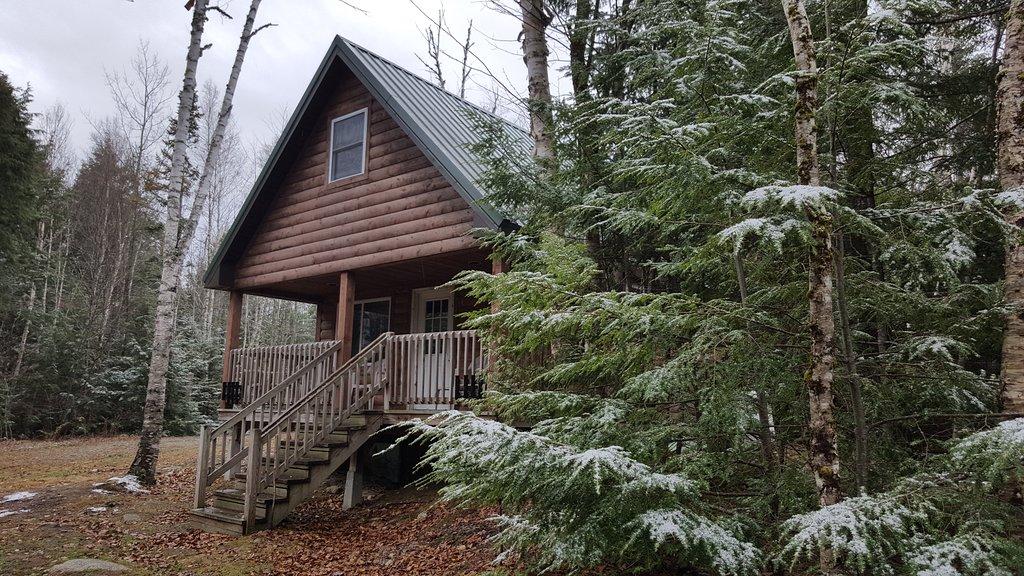 Wild Fox Cabins Resimleri - Springfield Fotoğrafları - Tripadvisor