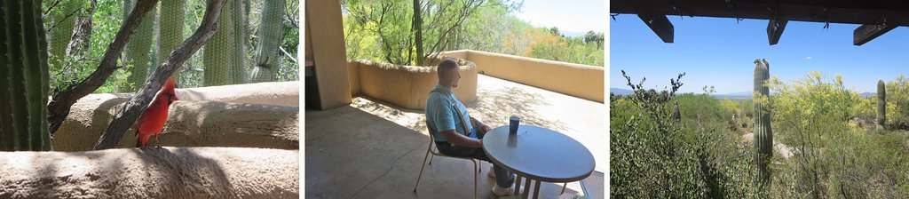 At The Terrace Cafe' for observing vista & wildlife (a friend sips iced tea)