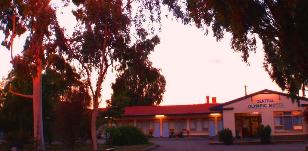 Central Olympic Motel and Cottages