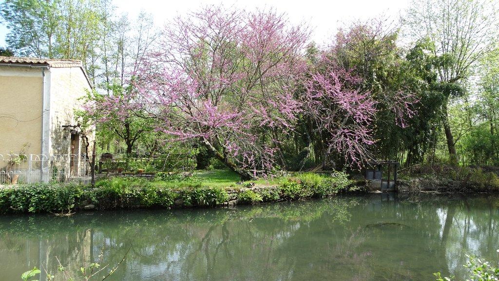 Moulin de la Papeterie