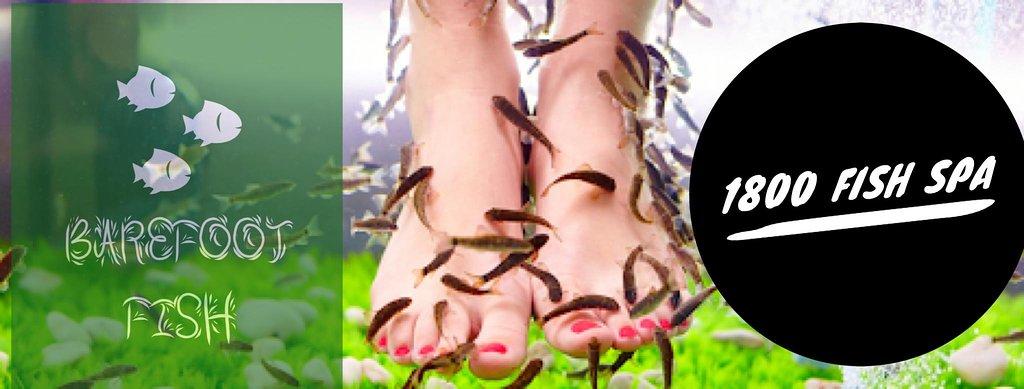 Barefoot Fish
