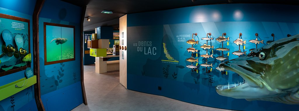 Aqualis, l'experience Lac