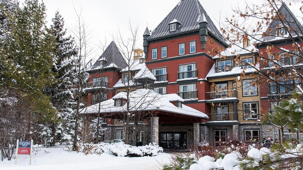 Village Suites by Blue Mountain Resort