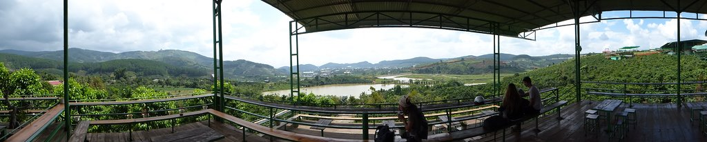 View at the weasel coffee farm