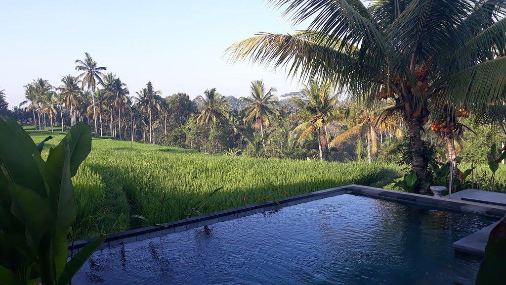Dukuh Village Villas & Art