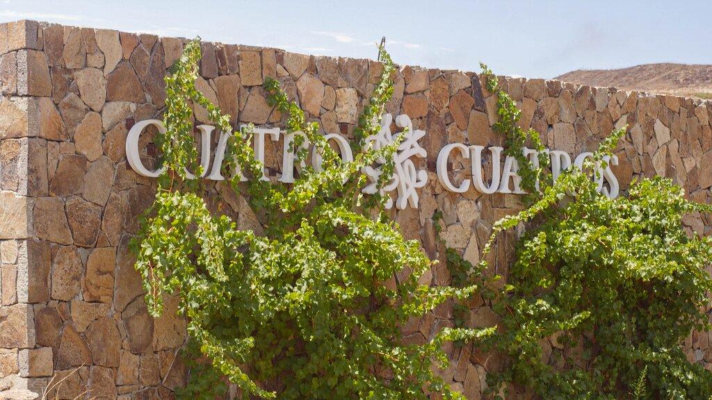 Hotel Cuatro Cuatros