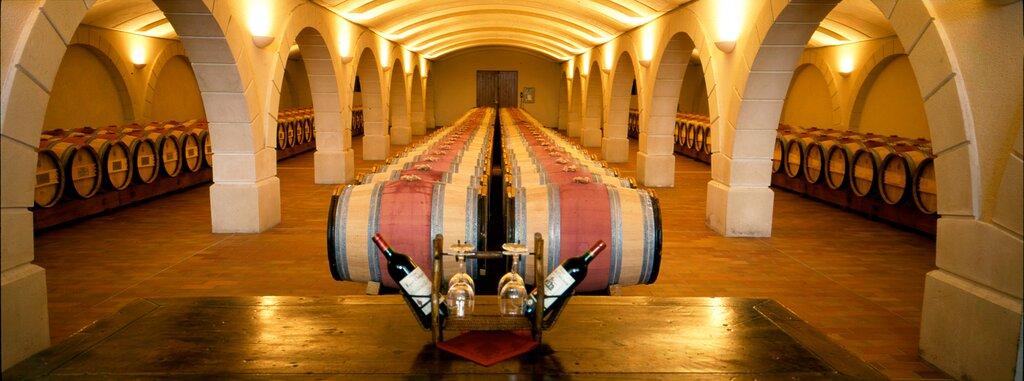 Chatonnet Vineyards