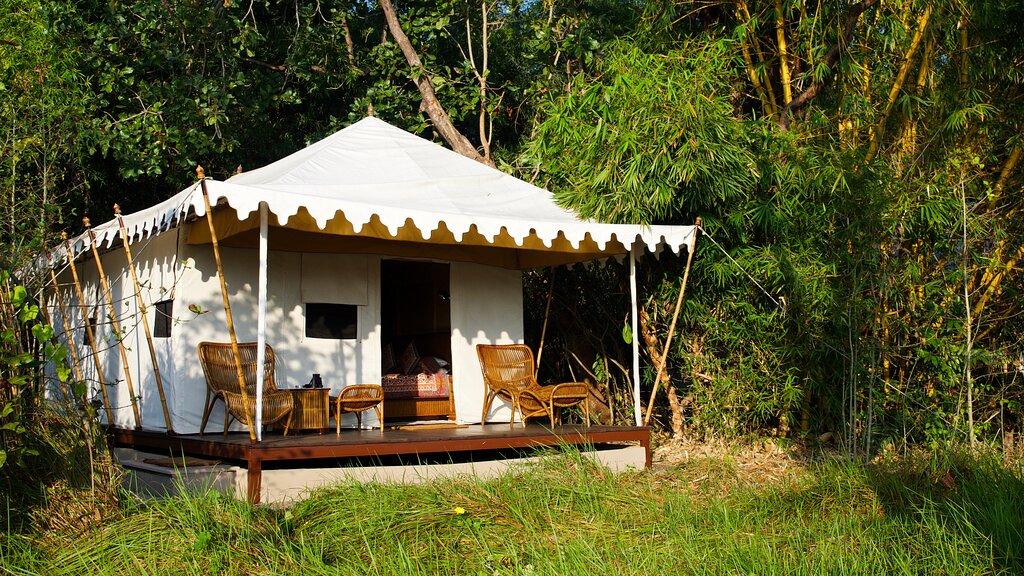 Bagh Villas Jungle Camp & Spa