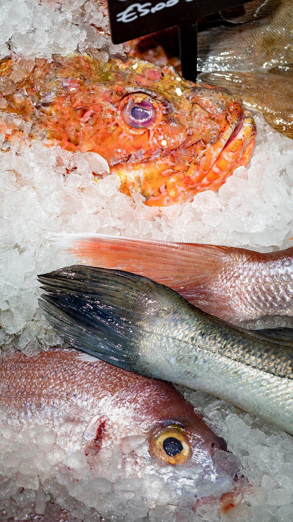 Banco a vista per la selezione del pesce