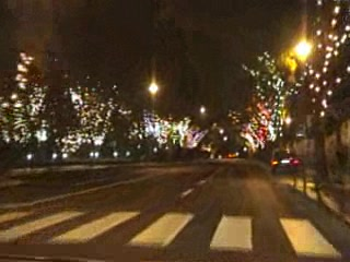 Funchal, Portugal: Xmas Driving Madeira