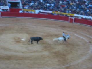 Πόλη του Μεξικό, Μεξικό: Mexico City - Horse Spin