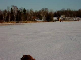 Hines, MN: 12 Ice fishing on Gull Lake