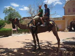 Jaipur, Hindistan: Camel Ride Video