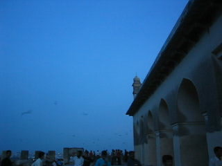 Hajdarabad, Indie: Video of the birds at the top of the Fort