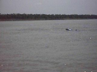 Phnom Penh, Cambogia: Suesswasser-Delfine, Mekong