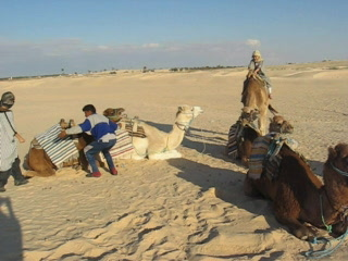 Douz, Tunisia: Loudish camel video