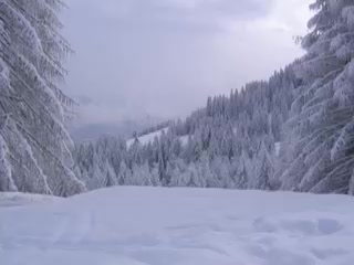 กอร์ตีนาดัมเปซโซ , อิตาลี: Cortina D'Ampezzo