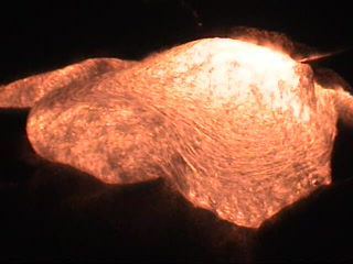 Hawaii Volcanoes National Park, HI: Lava at NIGHT: Close-up of a breakout!