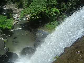 แคนส์, ออสเตรเลีย: Zillie Falls - Cairnes