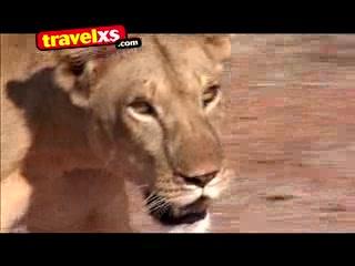 Kenia: Experience Kenya